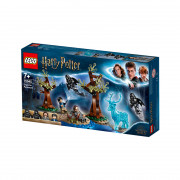 LEGO Harry Potter Ave zavetnikum (75945)