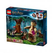LEGO Harry Potter Prepovedani gozd: Temyna dobi, kar ji gre (75967)