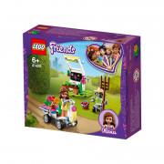 LEGO Friends Olivijin cvetlični vrt (41425)
